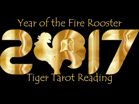 Tiger 2017 Chinese New Year Reading - Born 1950, 1962, 1974, 1986, 1998 - Secrets & Power