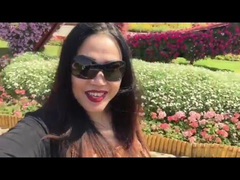 DUBAI MIRACLE GARDEN 2016 || POST VALENTINE DATE WITH FAMILY || Candy's Rouge