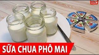 Cách làm Sữa Chua Phô Mai thơm ngon dễ làm tại nhà, ngon đúng vị ăn hoài không chán