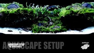 Aquascape Setup - The Hidden Forest