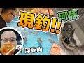 大阪【つり吉】現釣現吃海鮮餐廳!想吃什麼就釣什麼太新鮮了啊!《阿倫來吃喝》