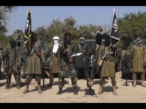 Niger's gov't says Boko Haram militants killed 18 people in Diffa