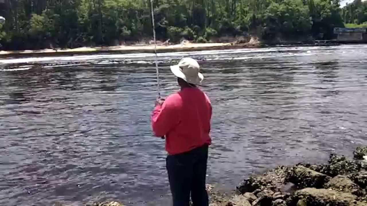 Sheepshead scouting may 2 north carolina youtube for North carolina out of state fishing license