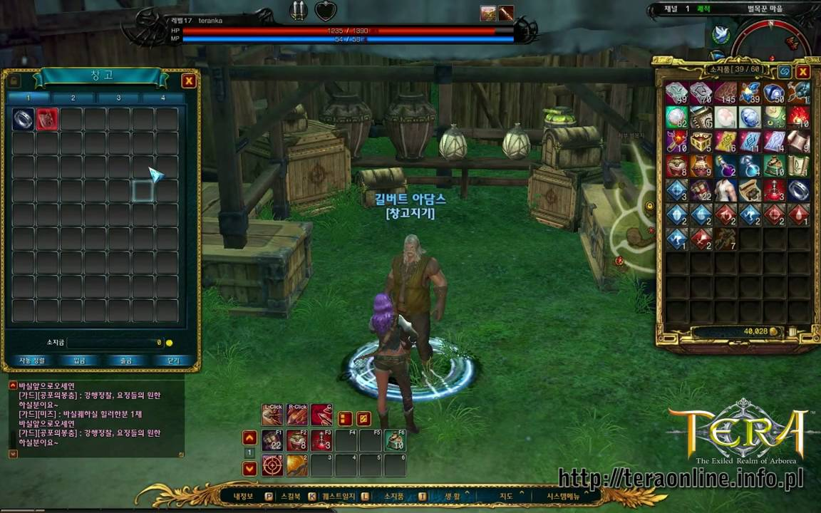 Tera Online Cbt3 Stash And Auction House Youtube