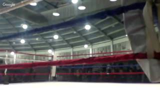 BENGAL BOUTS RING B