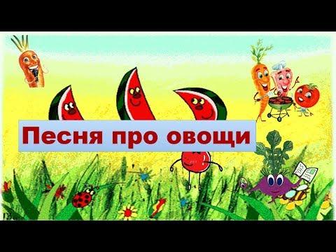 Песня про овощи для детей