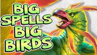 BIG SPELLS, BIG BIRDS, BIG FUN   Constructed   Hearthstone