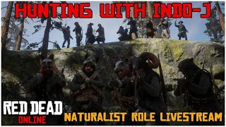 Hunting With Indo-J Part 2 |  Naturalist Role Livestream | Red Dead Online