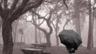 Los Hermanos Carrion - Entre la lluvia y mi llorar (Epicenter ReneSaurioBass)