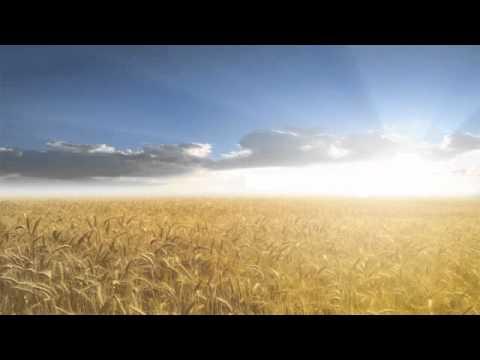 Bernstein: Chichester Psalms (Mvmt. II; Psalms 23 & 2) — Choir of Wells Cathedral