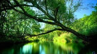 Renaissance music: Passio Domini Nostri Jesu Christe (full album)