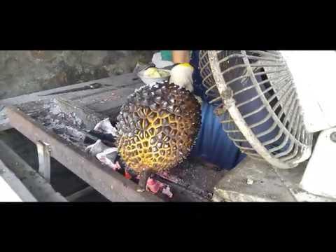 Jawa Pos Belah Durian Episode 46: Durian Bakar Wonosalam