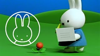 Miffy Gets A Postcard • Miffy & Friends