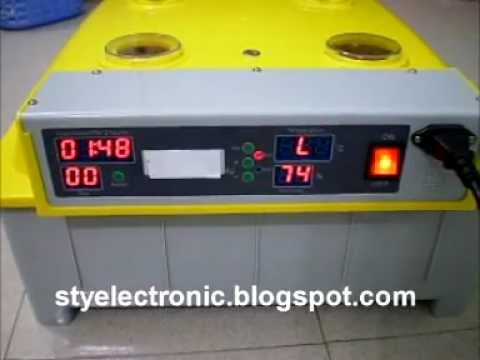 egg-incubator-fully-automatic---for-sale-2