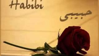 Hakim   Habibi   Mi Amor   حكيم   حبيبي Free MP3 Downloads