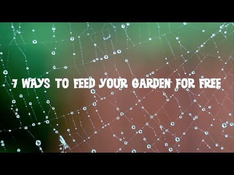 7 Ways to Feed Your Garden For Free (Complete Film)