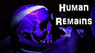 There's HUMAN REMAINS Here! ( Haunted Antiques Paranormal Research Centre )