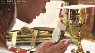 The Eucharist from the Angel at Fatima
