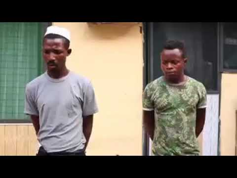 Application For Employment As A Fisherman | Short  Comedy Movie