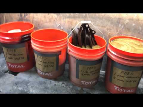how to remove rust with molasses DIY do it yourself