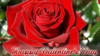 Valentines Love Story  Andy Williams  With lyrics