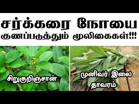 சர்க்கரை நோயை குணப்படுத்தும் மூலிகைகள்!!! Herbal and Natural Remedies for Diabetes