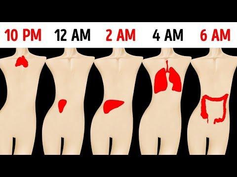 Por qué siempre te despiertas a la misma hora en la noche