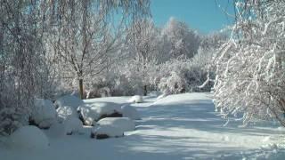 Senftenberger See - Winterzauber (HD)