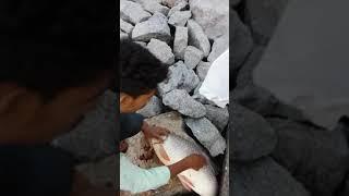 New ghanpur dam shikar by yasar arafath786