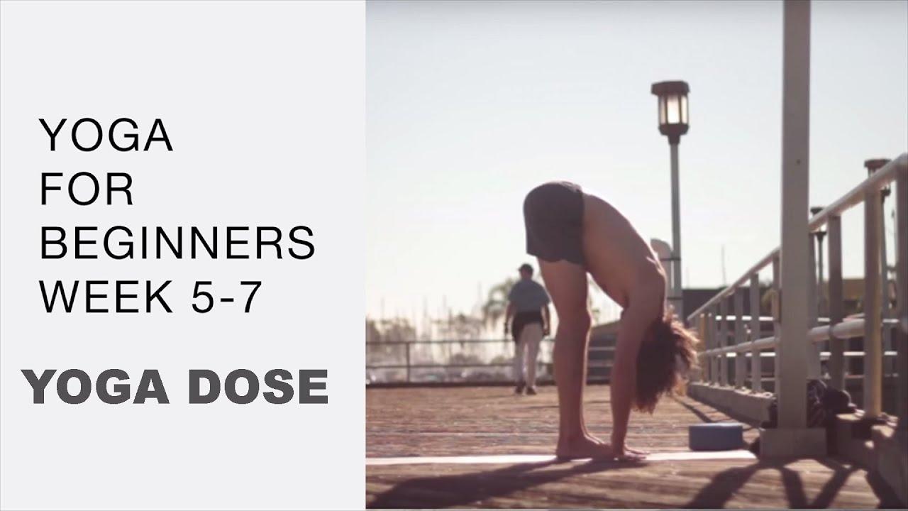 Yoga For Beginners Week 5 - 7  with Tim Senesi