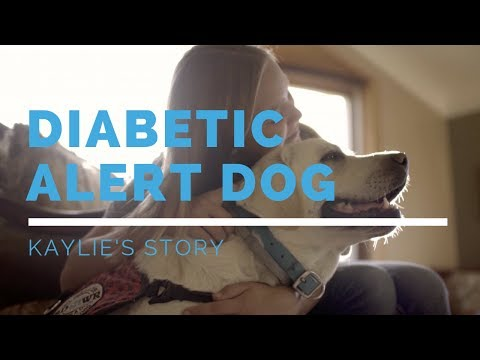 diabetic-alert-dog-feature:-kaylie