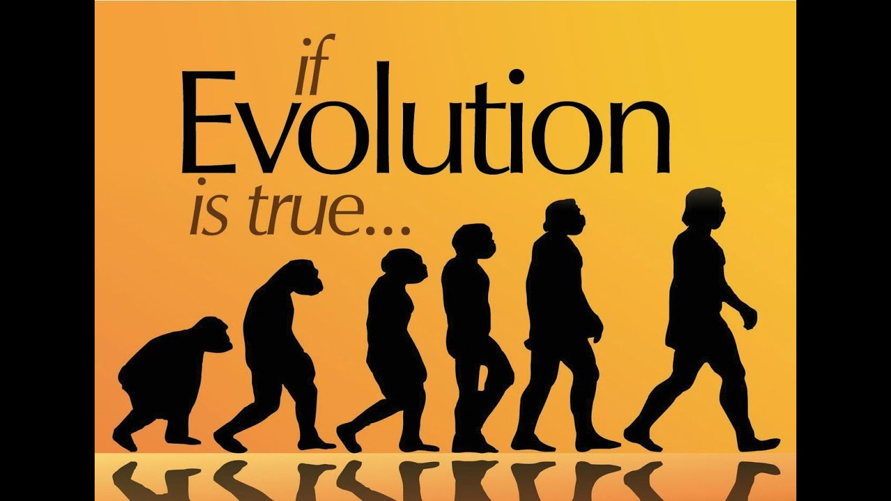 Evolution as fact and theory