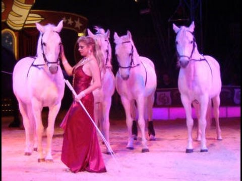 Circus Probst Tiere