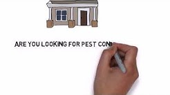 Franklin Square NY Pest Control | Pest Control in Franklin Square New York