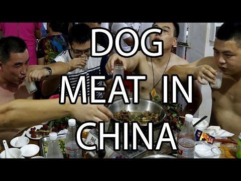 Dog Meat in China | Stuff That I Find Interesting