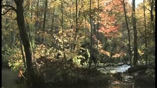 Video Beautiful Landscapes of Japan -- Season 1 Episode 5 download MP3, 3GP, MP4, WEBM, AVI, FLV Juli 2018