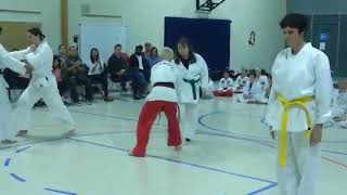 Testing in 2016 Martial Arts