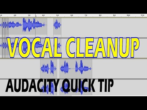 Cleaning Up Vocals - Audacity Quick Tip: 4 Steps