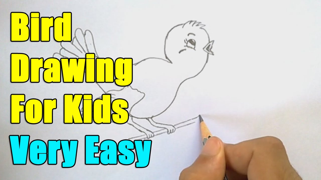 How To Draw A Bird For Kids Youtube