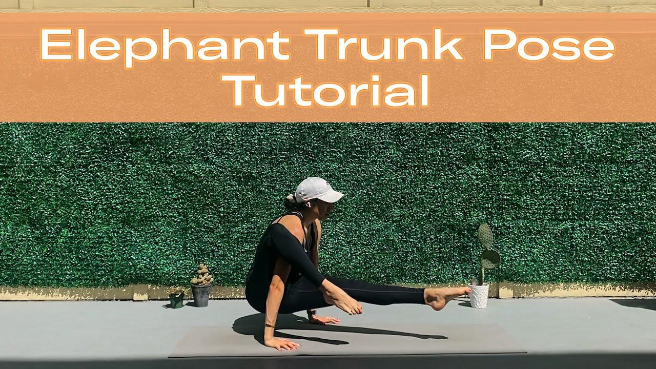 Elephant Trunk Pose (Eka Hasta Bhujasana)