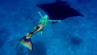 Video Mermaid Melissa Swims With Giant Manta Rays In Australia! download MP3, 3GP, MP4, WEBM, AVI, FLV Oktober 2018