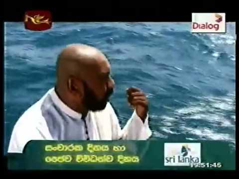 WWW PIVITHURU NET  TELE DRAMA SINHALA ENGLISH HINDI TAMIL MOVIES NEWS LIVE TV LIVE CRICKET  MP3  VIDEO SONG FUNNY VIDEO
