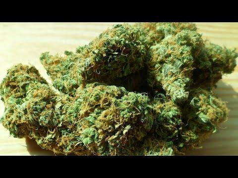 Wie schädlich sind Marijuana, Alkohol &...
