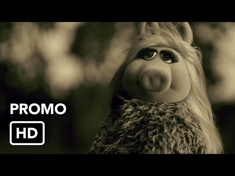 The Muppets Take on Adele — Watch Hilarious 'Hello' Parody Video