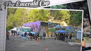 Emerald Cup | Outdoor Organic Cannabis Competition - Emerald Triangle