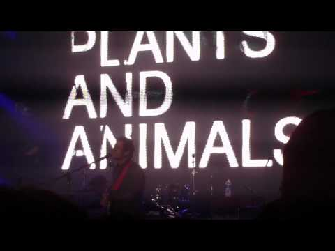 Plants and Animals - Faerie Dance (2010 Indie Music Awards)
