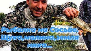 Рыбалка на щуку Земляника малина Прогулка по лесу 2021