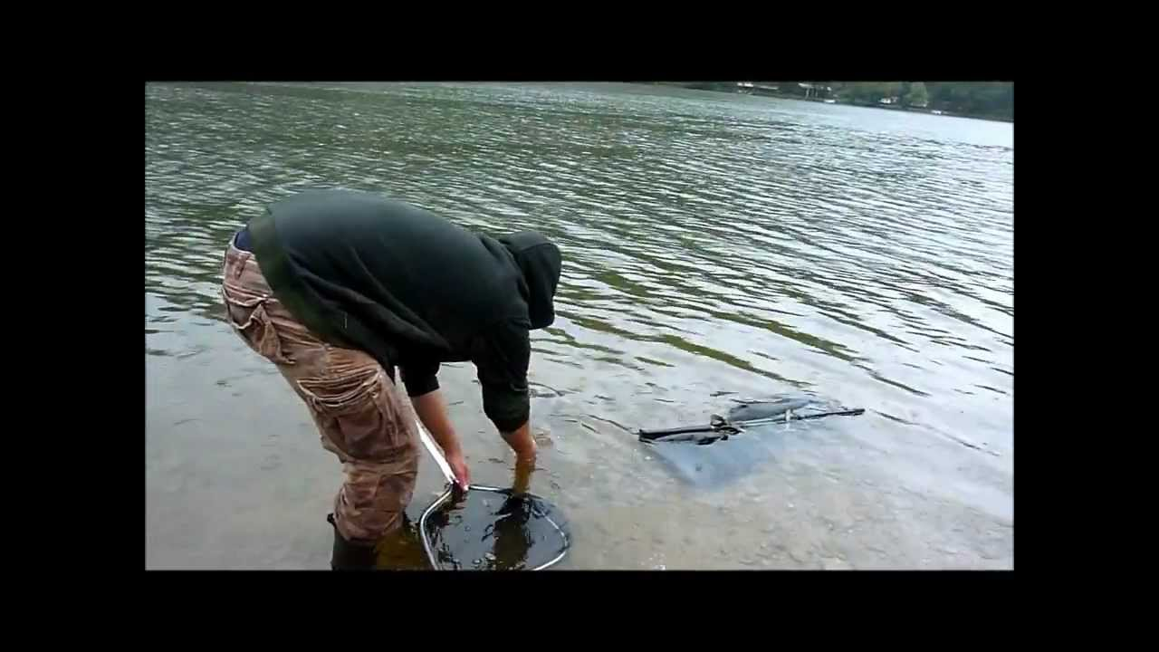 Fishing in west virginia catfish and carp youtube for West virginia out of state fishing license