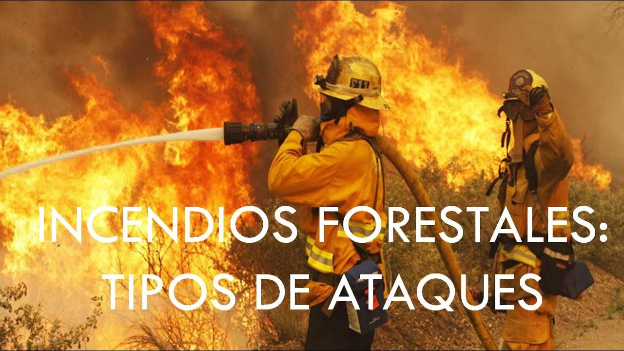 incendios forestales libro pdf