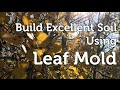 Build Fantastic Soil and Fertilize using Leaf Mold (compost) made from Autumn Leaves and Wood chips
